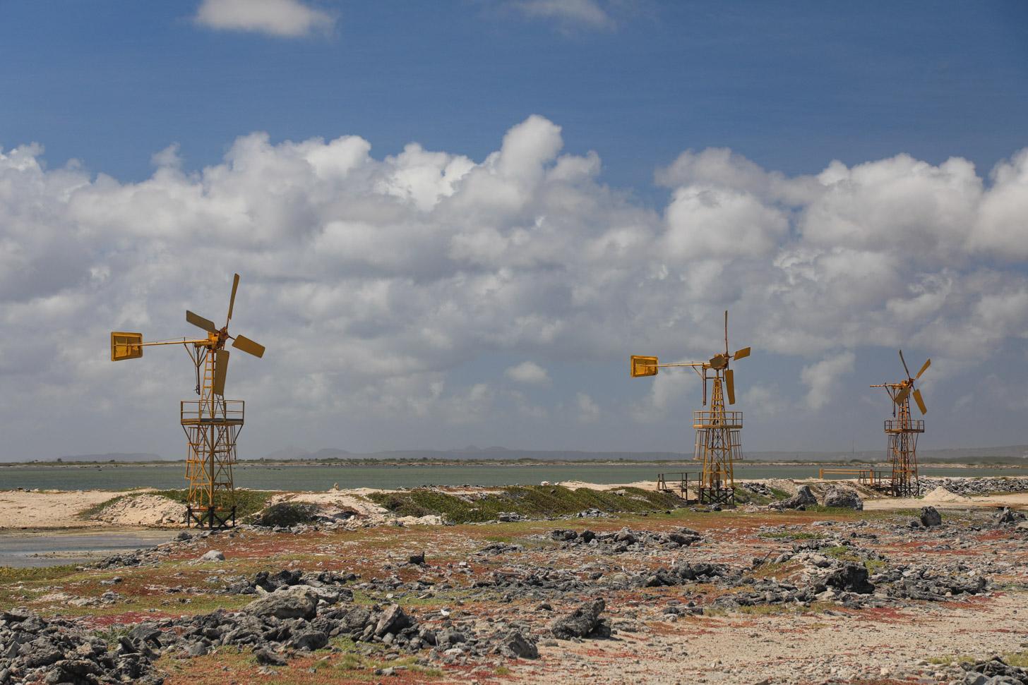 Het kan serieus waaien op Bonaire